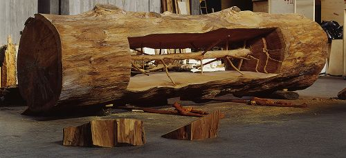 Giuseppe penone a memorable apprehension of the inner nature of life and co - Giuseppe penone versailles ...
